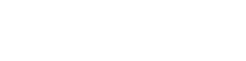 Search & Placement for Financial Services Industry